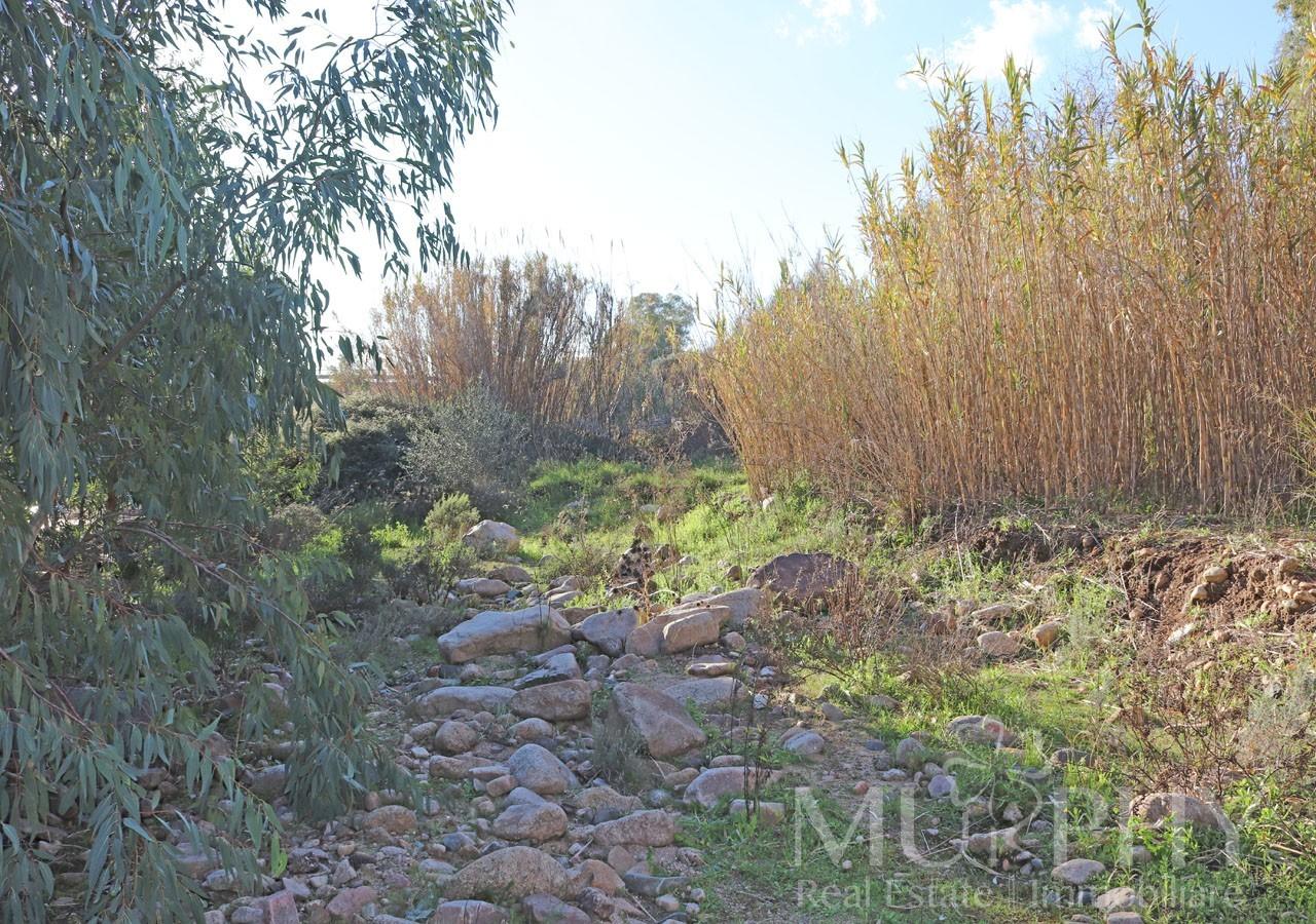 210-stazzo-enas-vendita-imobiliare-murphy-olbia-terreno