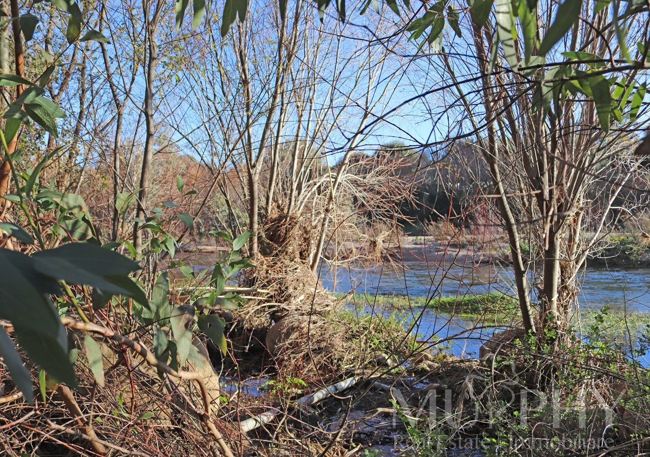 220-stazzo-enas-vendita-imobiliare-murphy-olbia-terreno-fiume